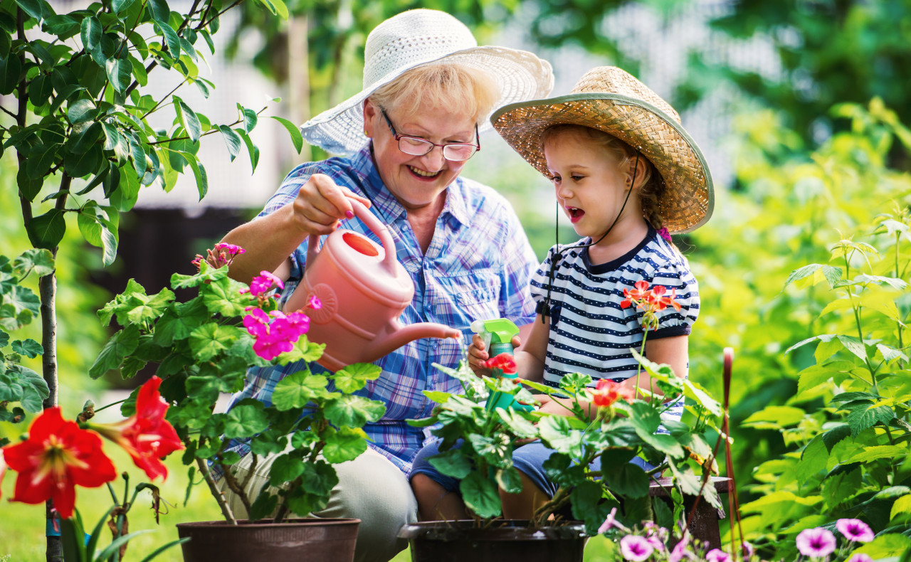 Senior woman and her grandchild working in the garden with plants.